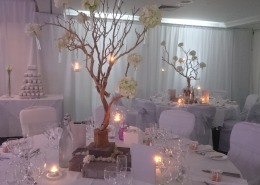 white backdrop drapes and uplighters at solent hotel and spa
