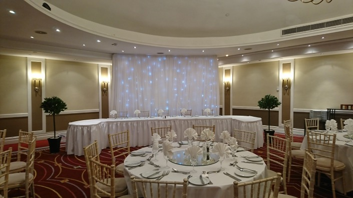 2 x artificial bay trees and backdrop at portsmouth marriott